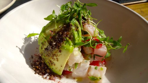 Local Halibut Ceviche with Avocado, Salsa Mexicana, and Toasted Hominy (7.5-8/10).