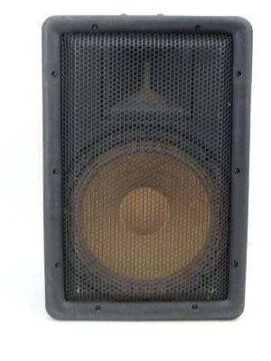 Single Peavey Stadia TII Weather Resistant Monitor Speaker