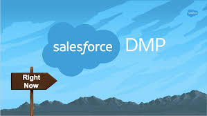 How might Salesforce DMP help a Marketer with their advertising?