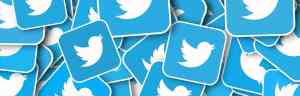 Use Twitter to grow your network