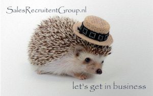 Sales Headhunters - Sales Recruitmment Brabant
