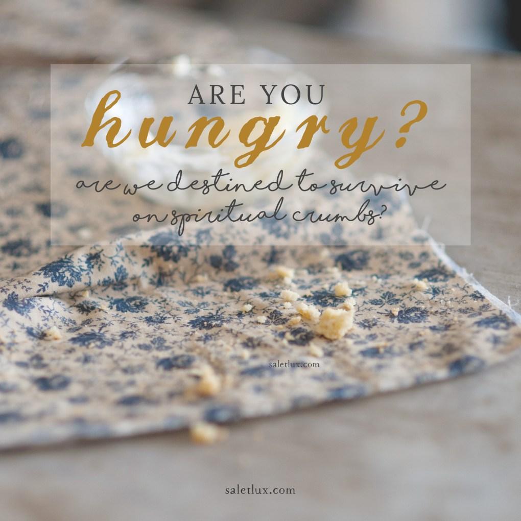 hungry-soul-instagram-saletlux copy