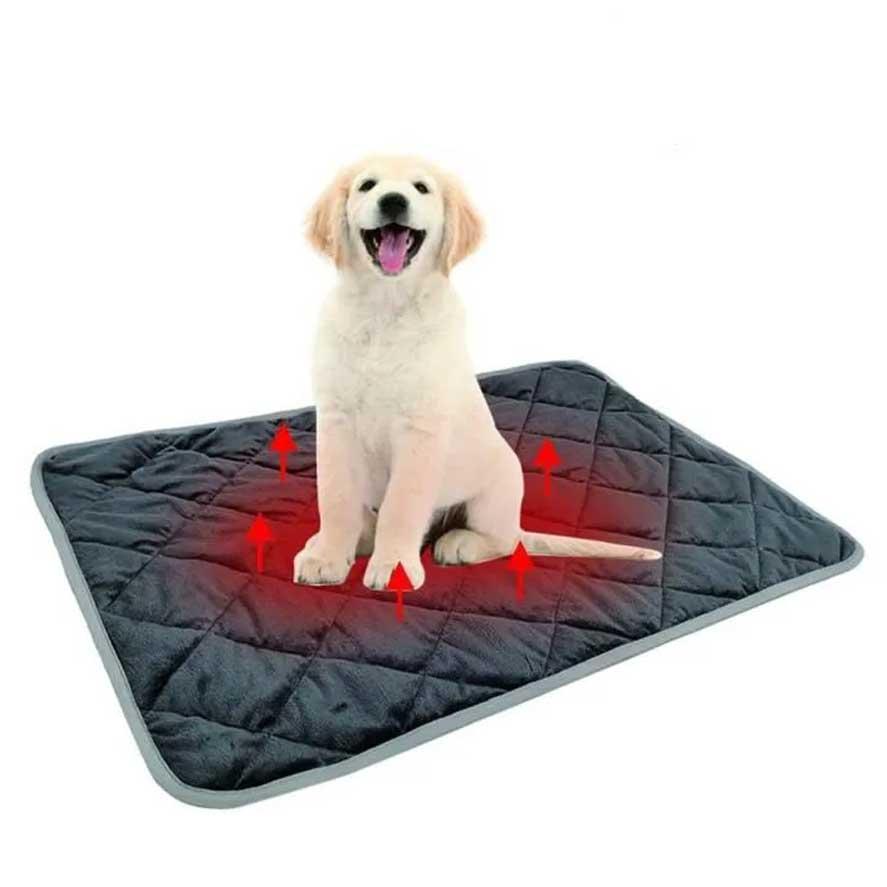 tapis auto chauffant pour chats et chiens l canijess