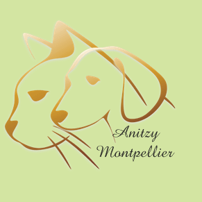 Logo Anitzy