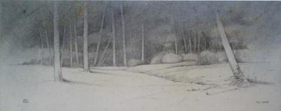 Bosque I 29x14
