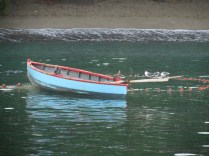 05_FB_Seagulls_waiting_in_rowing_boat