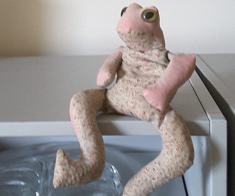 Angela's frog