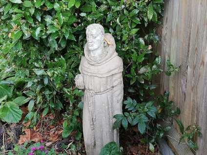 St Francis, photo by Carole