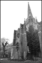 cementerio abney park londres 2011 (3)