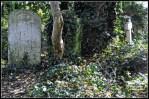 cementerio abney park londres 2011 (5)