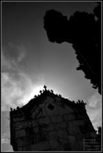 cementerio san miguel malaga 2012 (6)
