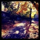 autumnfall