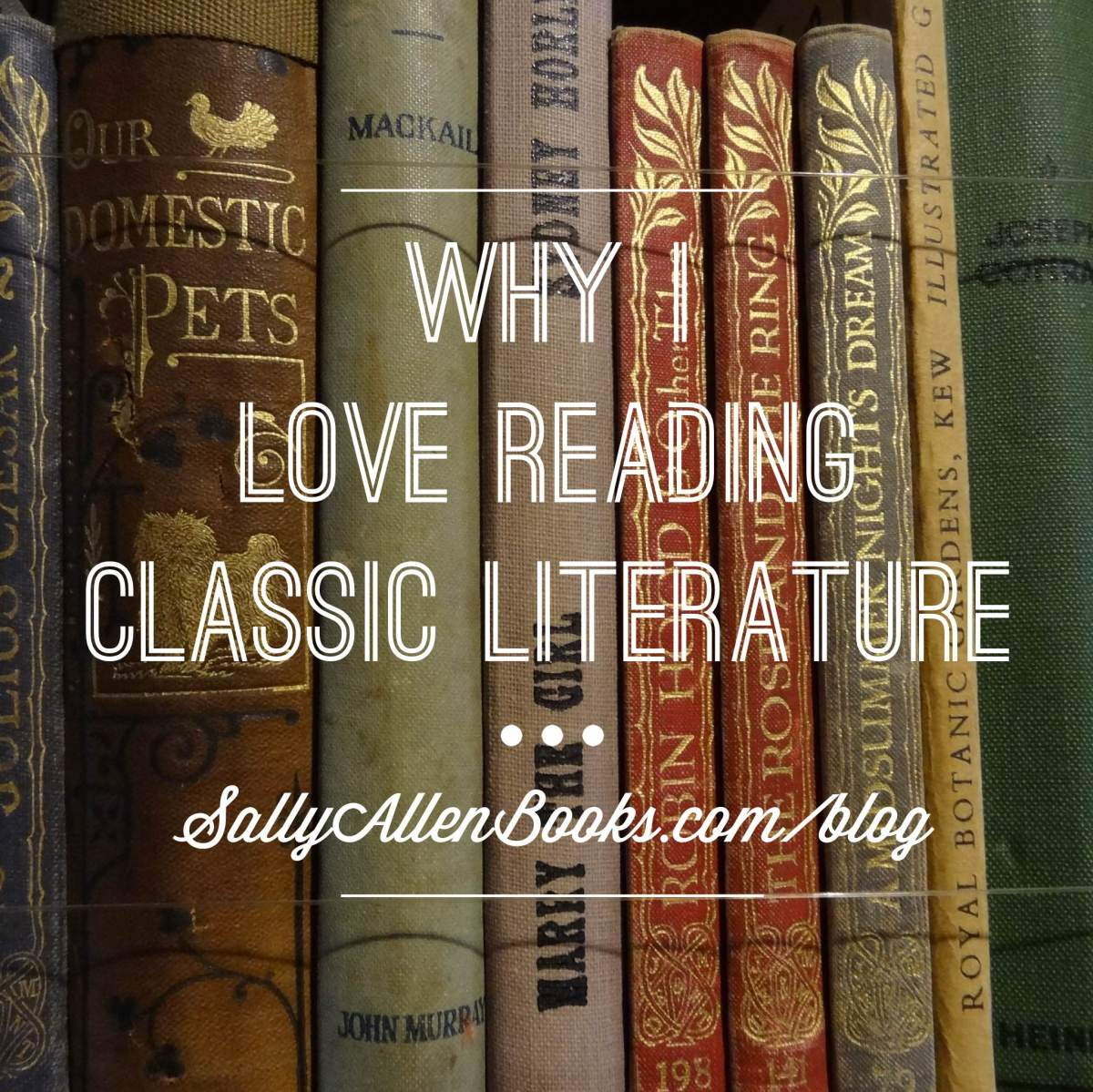 Why I love reading classic literature – Sally Allen