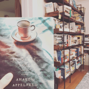 Books read in November: Suddenly, Love by Aharon Appelfeld