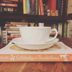 January reads: Cartwheeling in Thunderstorms