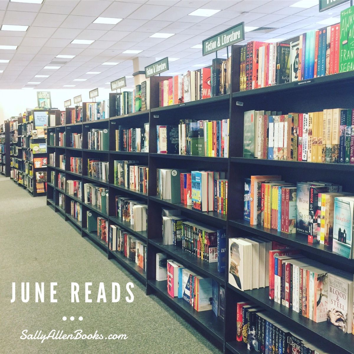 Reading wrap-up: June reads and purchases