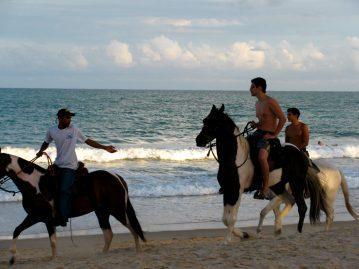 Praia Macho, 2011