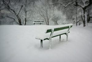 snow and bench
