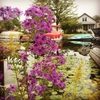 Winona Lake Canal