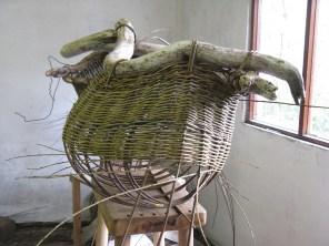 checking base is level of 'boat' basket