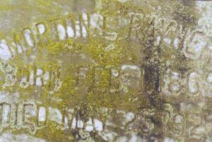 cemeteryr15