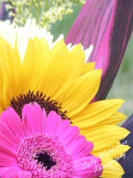 beautiful hot pink gerbera and sunflower bouquet