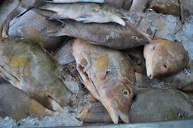 Venta de pescado en cuaresma