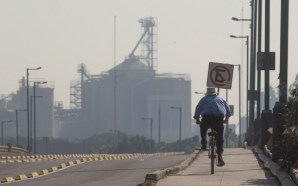 La contaminación estaría afectando la fertilidad