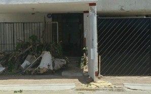 TALAN ÁRBOLES EN VARIOS PUNTOS DE SALAMANCA