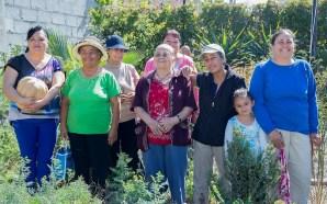 Guanajuato Impulsa a la Mujer en la zona Rural