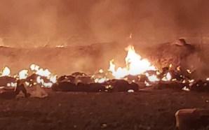 En plena ordeña, explota ducto de Pemex en Hidalgo; temen…