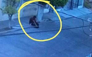 ¡Precaución! personas sospechosas rondan en varias colonias CIUDADANOS DENUNCIAN PRESENCIA…