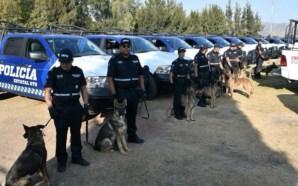 ASEGURA GOBIERNO ESTATAL QUE GUANAJUATO TIENE LA SEGUNDA POLICÍA MÁS…