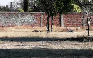 LOCALIZAN DOS CUERPOS, CERCA DE UN KINDER EN LA COLONIA…