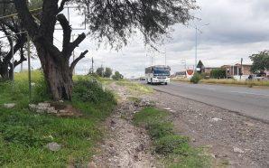URGE REHABILITACIÓN EN AVENIDA VALLE DE SANTIAGO