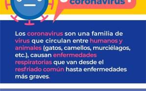#Salud LOS CORONAVIRUS, PUNTOS QUE NO DEBES OLVIDAR.