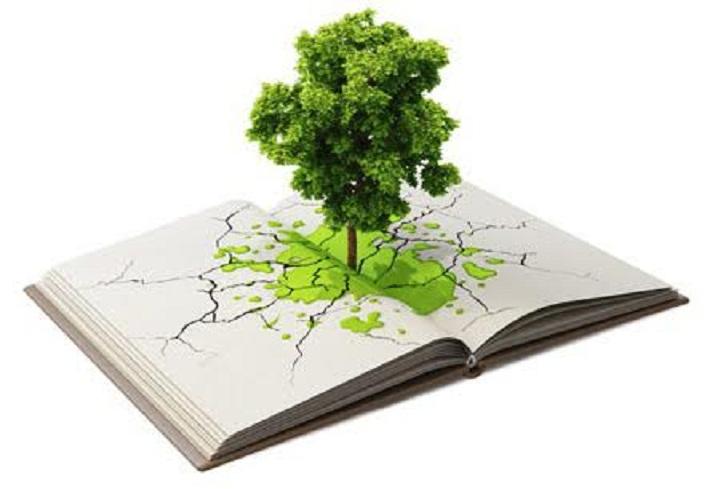 Insights into Environmental Education - Blogging Junction