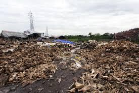 abattoir waste india