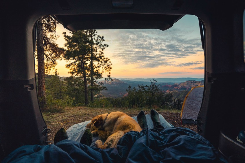 safety tips forest camping