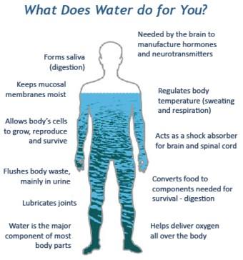 drinking-water-benefits
