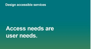 access needs user needs