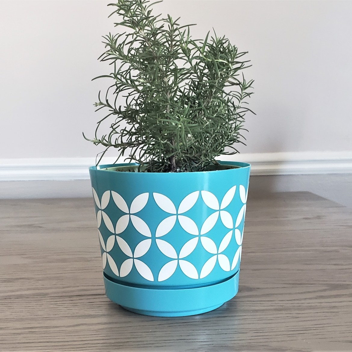 Fun Flower Pots Designed using the Silhouette Cameo