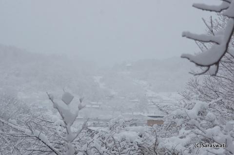 12月4日のオタモイ竜宮城