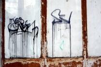 DSC_2004