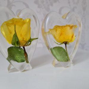 trophy heart flower preservation