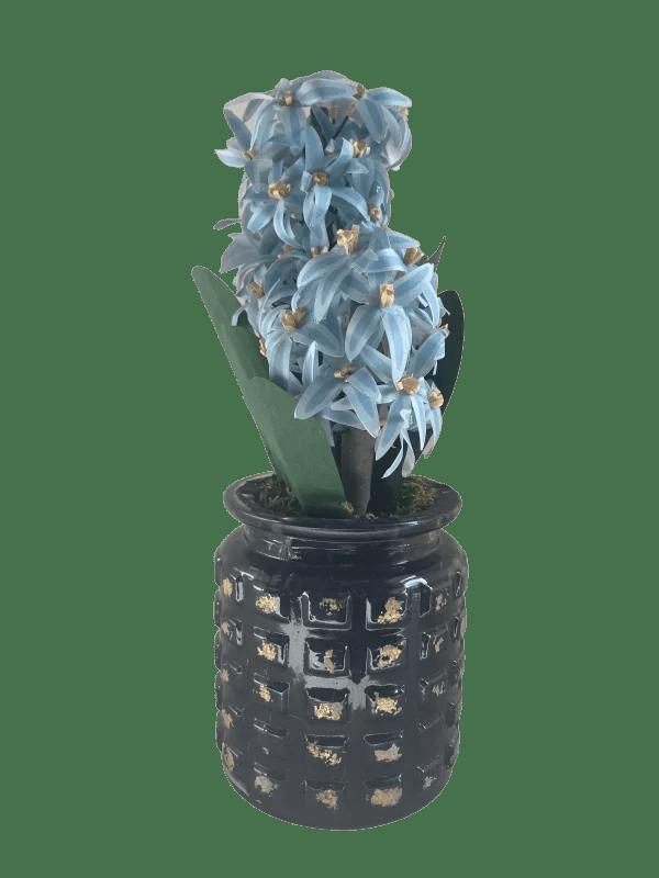 Salsola Kali Soap Flowers Blue Bliss