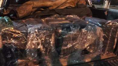 Photo of Decomisaron un enorme cargamento de hojas de coca