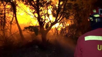 Photo of Una implacable ola de calor generó un grave incendio en España