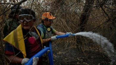 Photo of Bolivia apagó el 85% de los incendios en la Amazonía