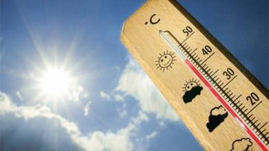 Photo of Salta en llamas: este viernes la máxima sería de 38°